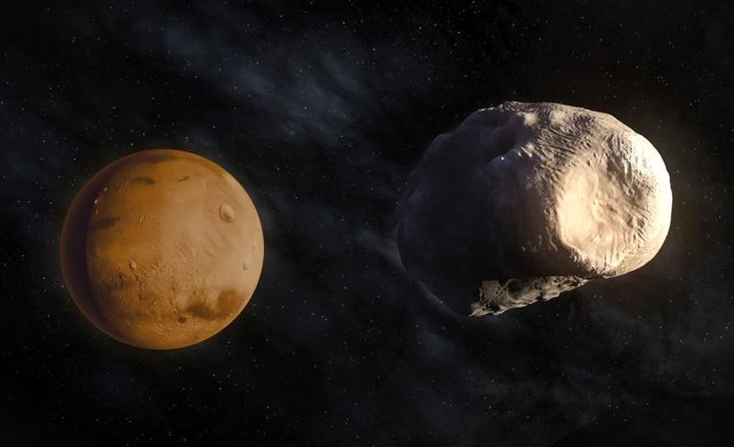 Ayın kayıp ikizi 22 yıl sonra