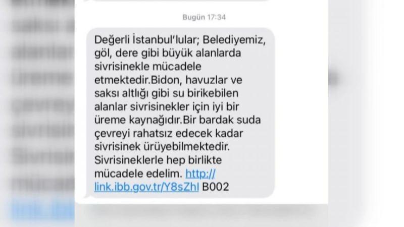 İstanbul'da sivrisinek kabusu!