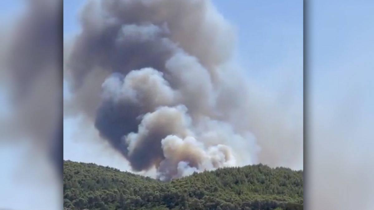 Bodrum'da  da yangın çıktı